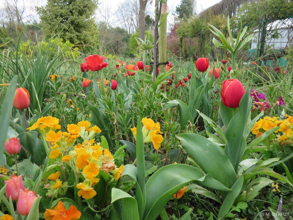 visiter jardins claude monet giverny