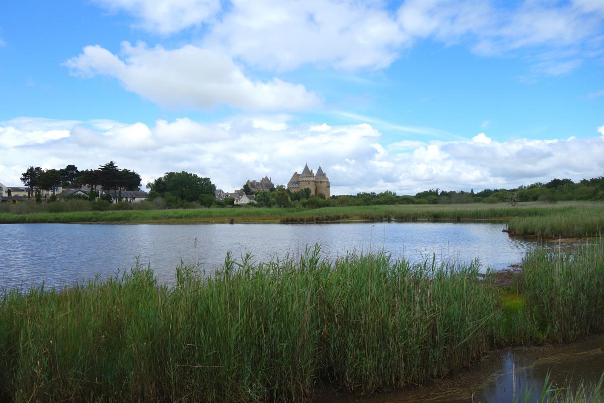 vue sur le château de Suscinio depuis les marais de Sarzeau